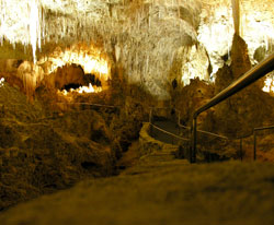Carlsbad Caverns in Carlsbad, New Mexico (NM)